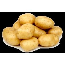 Чтоб картофель уродил – применяйте Экосил