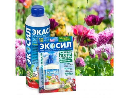 С Экосилом садовым цветам болезни не страшны